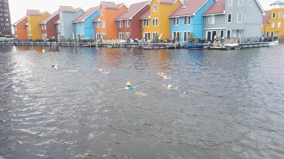 zwemmers reitdiephaven